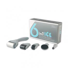 Σετ 6 σε 1  ICE Derma Roller με βελόνες τιτανίου 0.5-2mm