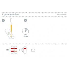 Τεστ διάγνωσης Πνευμονιόκοκκου Streptococcus Pneumaoniae 572004N 10τεμ