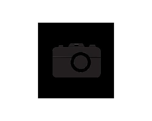 """Βελόνες Μιας Χρήσεως BD Microlance 25G x 5/8"""""""